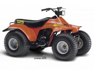 Année 1983 Suzuki LT125, le quad est né !